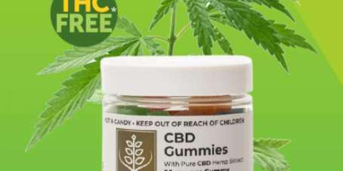 LivingTree CBD Gummies: Reviews, Ingredients, Scam Work & Buy?