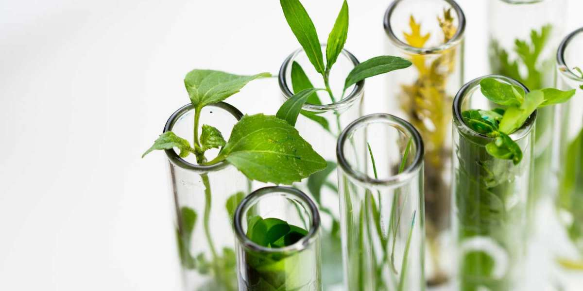 Bioreactors Market: Industry Analysis and Forecast (2020-2026)