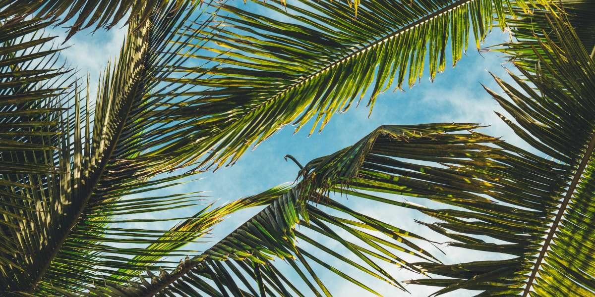 21 Aesthetic Tumblr Background Aesthetic Backgrounds Tumblr Backgrounds Cute Backgrounds Jpg Windows Activator Free 32bi